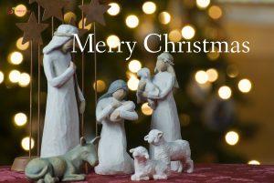 Happy Christmas Sheep